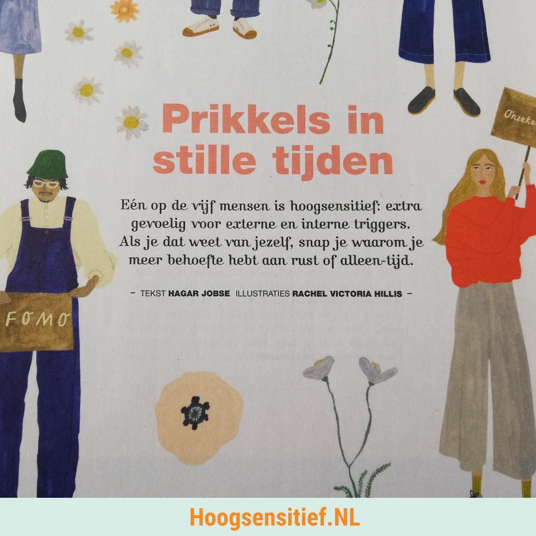 Flow: prikkels